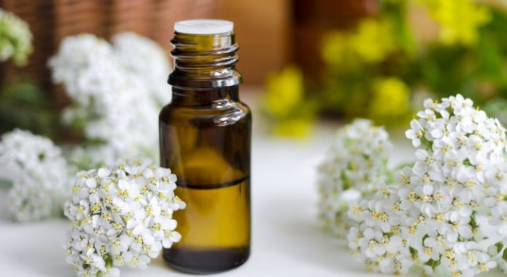 10 Amazing Health & Beauty Benefits Of Yarrow Essential Oil