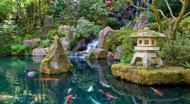 15 Japanese Pond Garden Ideas