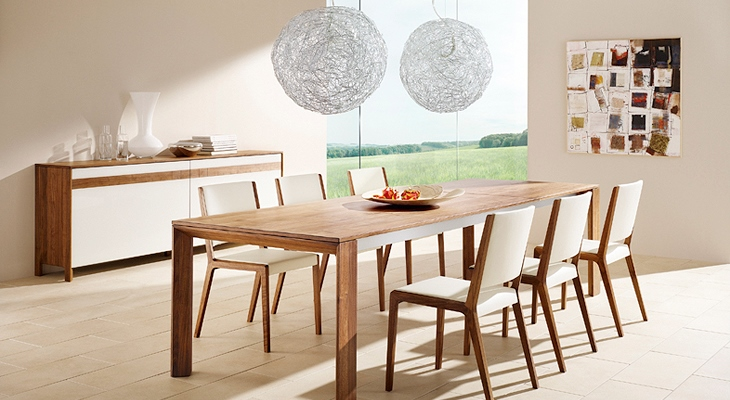 Simple Contemporary Dining Room Furniture