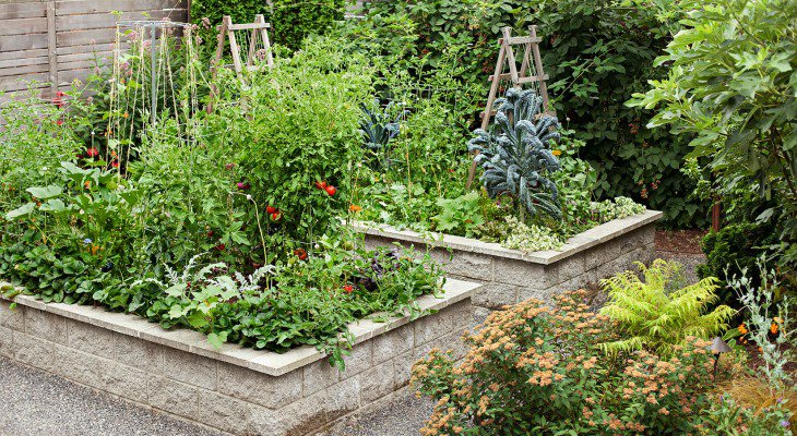 Sustainable garden design